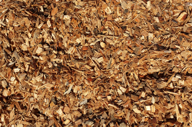 Chipping vs Shredding, which is better suited to you?