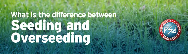 What is the difference between Seeding and Overseeding?