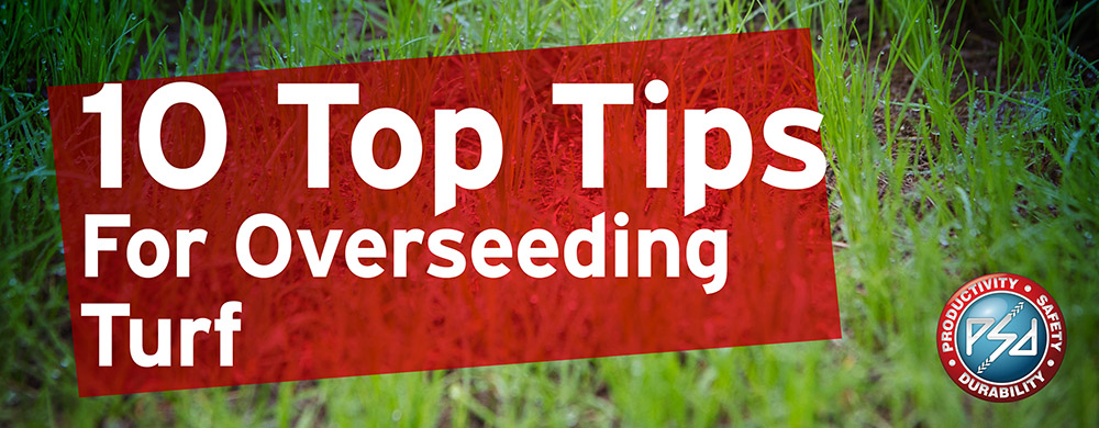 10 Top Tips for Overseeding Turf